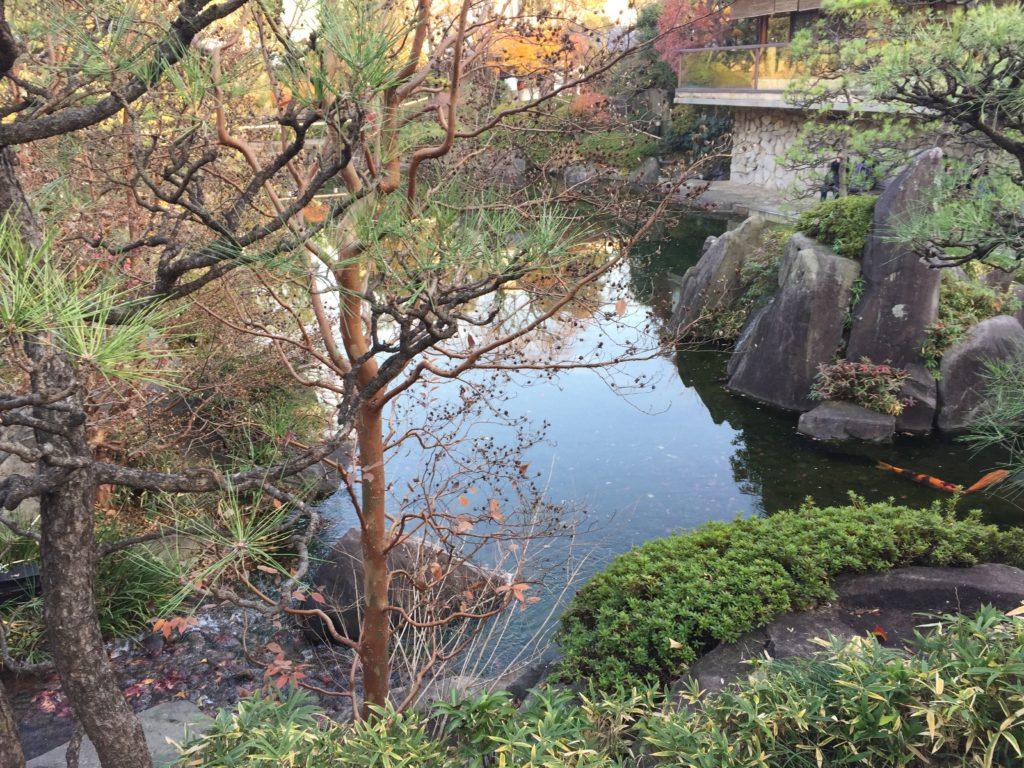 目白庭園4